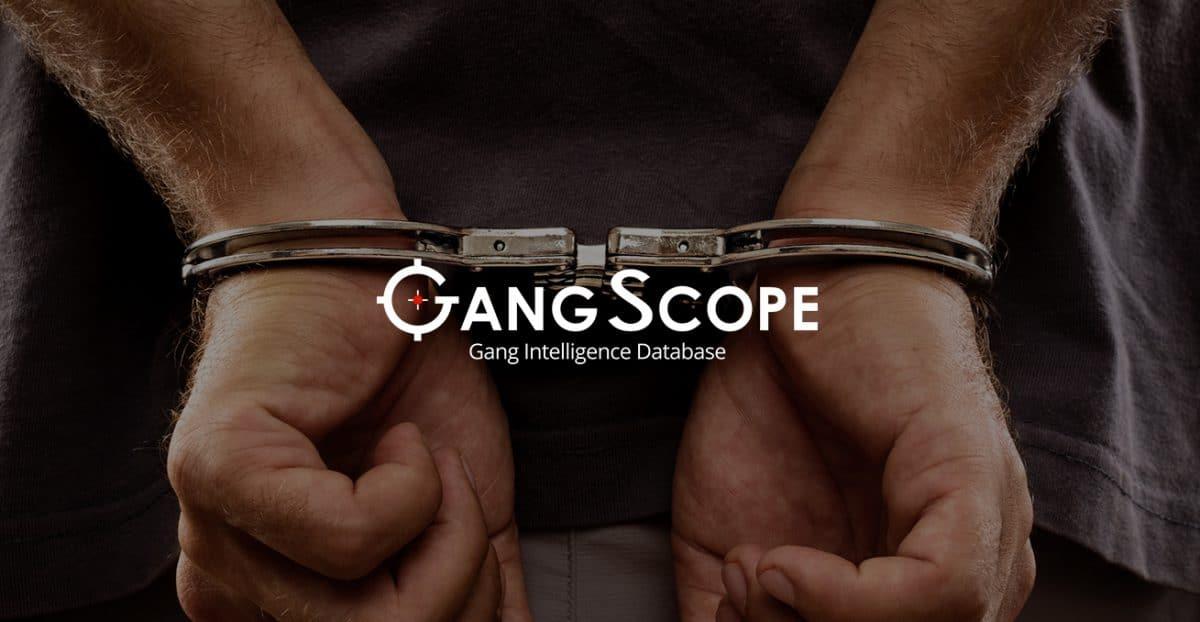 GangScope software image